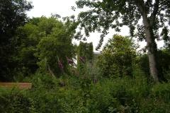 3. Monanimy Castle